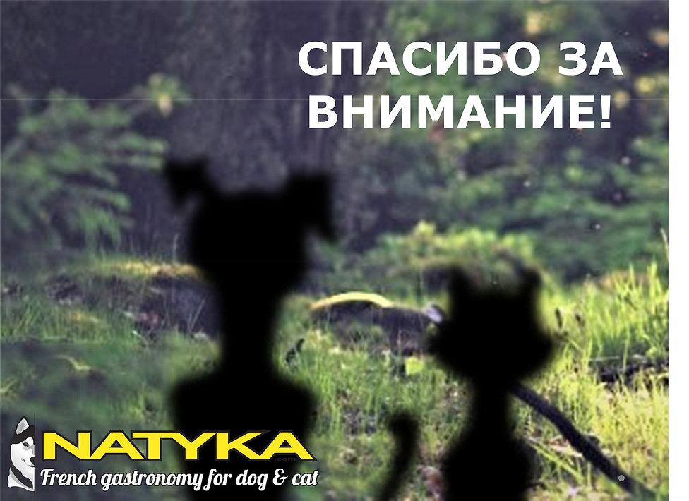 Natyka  презентация-54.jpg