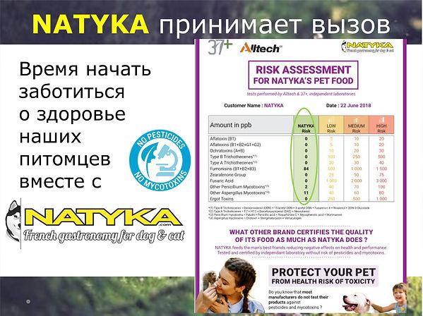 Natyka  презентация-20.jpg