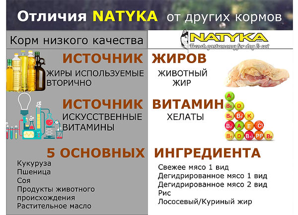 Natyka  презентация-16.jpg