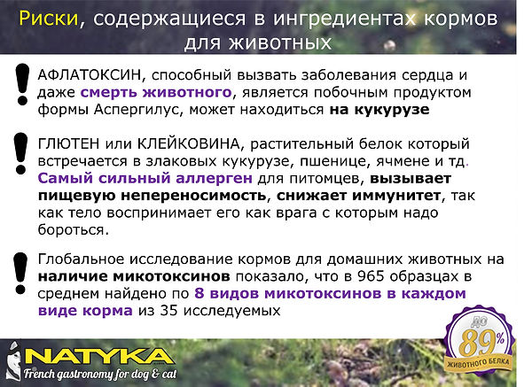 Natyka  презентация-17.jpg
