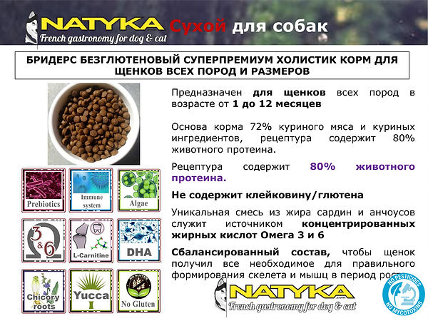 Natyka  презентация-42.jpg