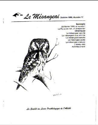 vol 11.jpg