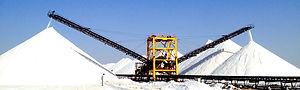 Delmon Salt Plant