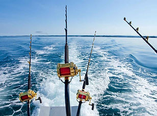 Pesca Cancun Tours and Adventures.jpg