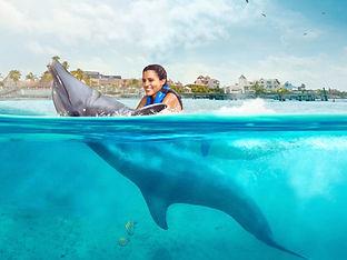 swim-adventure.jpg