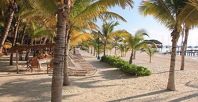 Club de Playa Cancun Tours and Adventure