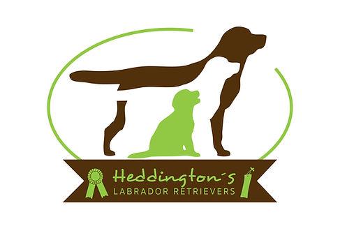 Logo Heddington's Labrador Retriever Neukirchen-Vluyn