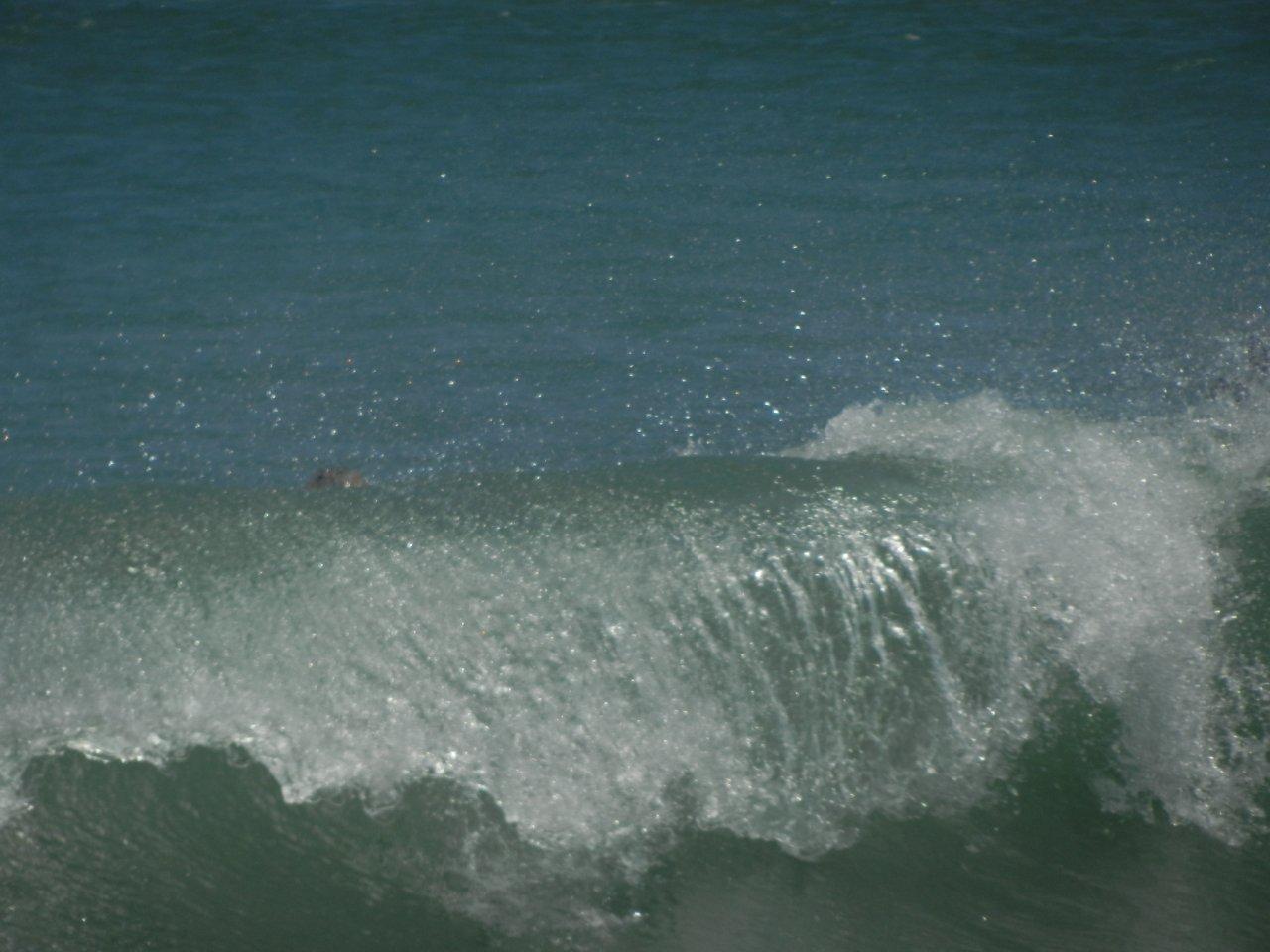 Deliciosos mar en las Pocitas
