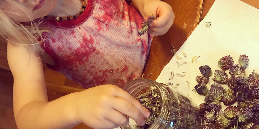 Early Childhood Herbal Support