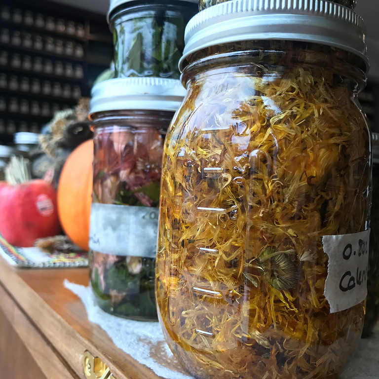 Herbal Skin Care 101: Infused Oil and Salve Making