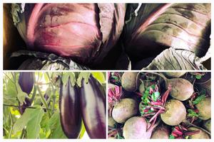 חציל בערבה, כרוב וסלק בשוק כפר-סבא