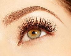 eyelash 1.jpg