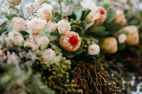 Jade Flores Photography -  Wedding - Ani
