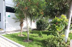 Jardines y Plantas