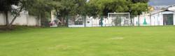 Futbol y deportes