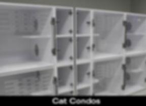 CatCondo_BoardingPage_CompanionAnimalCli