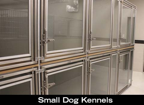 Even little dogs have their own special area and appropriate sized kennels at Companion Animal Clinic