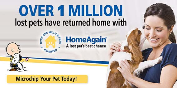 HomeAgain microchip will help you reunite with you again if your pet ever  gets lost. Companion Animal Clinic can insert the microchip and enter the information into a national database
