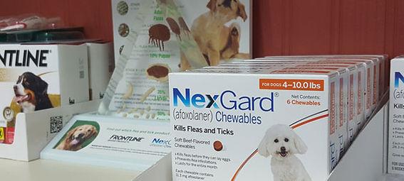 Pet health and parasite, flea, tick prevention - Companion Animal Clinic - Cedar Valley Vets. Parasite prevention for your pet