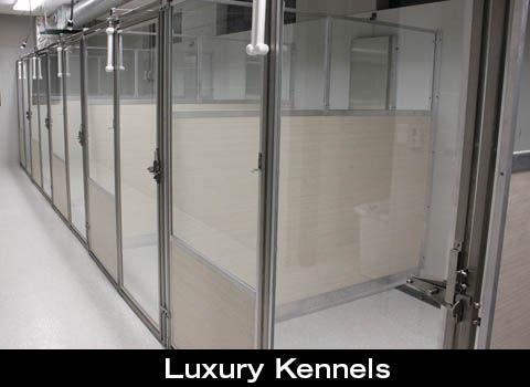 LuxuryKennelsBoardingPage_CompanionAnima