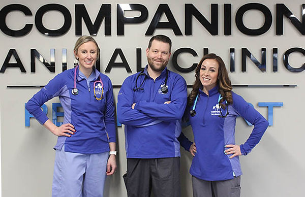 Dr. Amanda Rtter, Dr. Ben Nemmers, Dr. Colleen Nemmers - Companion Animal Clinic