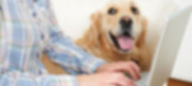 Veterinary Resources - We are here to help with your pet care - Compaion Animal Clinic