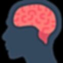 brain (6).png