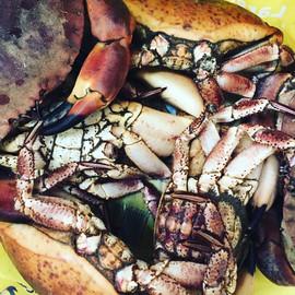 whitby crab.jpg