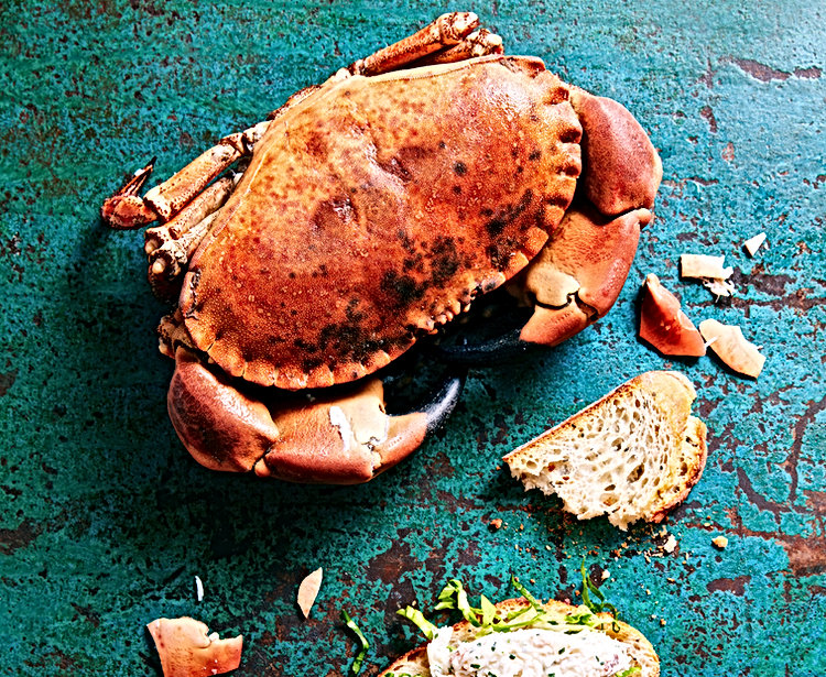 ROB%20CRAB_edited.jpg