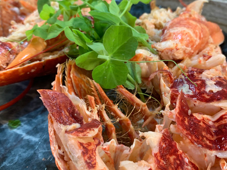 Preparing and dressing lobsters at home