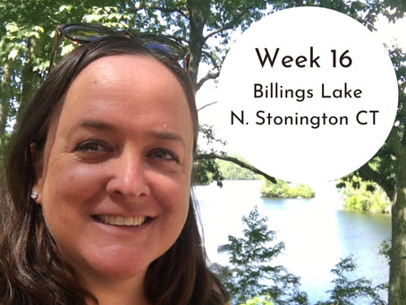 Billings Lake, N. Stonington CT