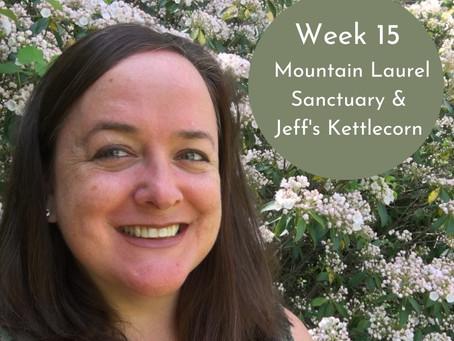 Mountain Laurel Sanctuary & Jeff's Kettle Corn