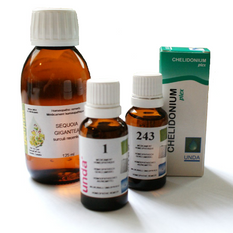 Biotherapeutic Drainage