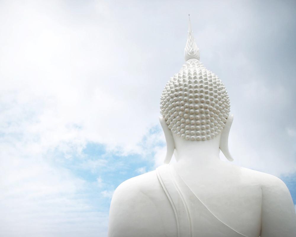MEDITAÇÃO É BUDISMO, MAS BUDISMO NÃO É MEDITAÇÃO!