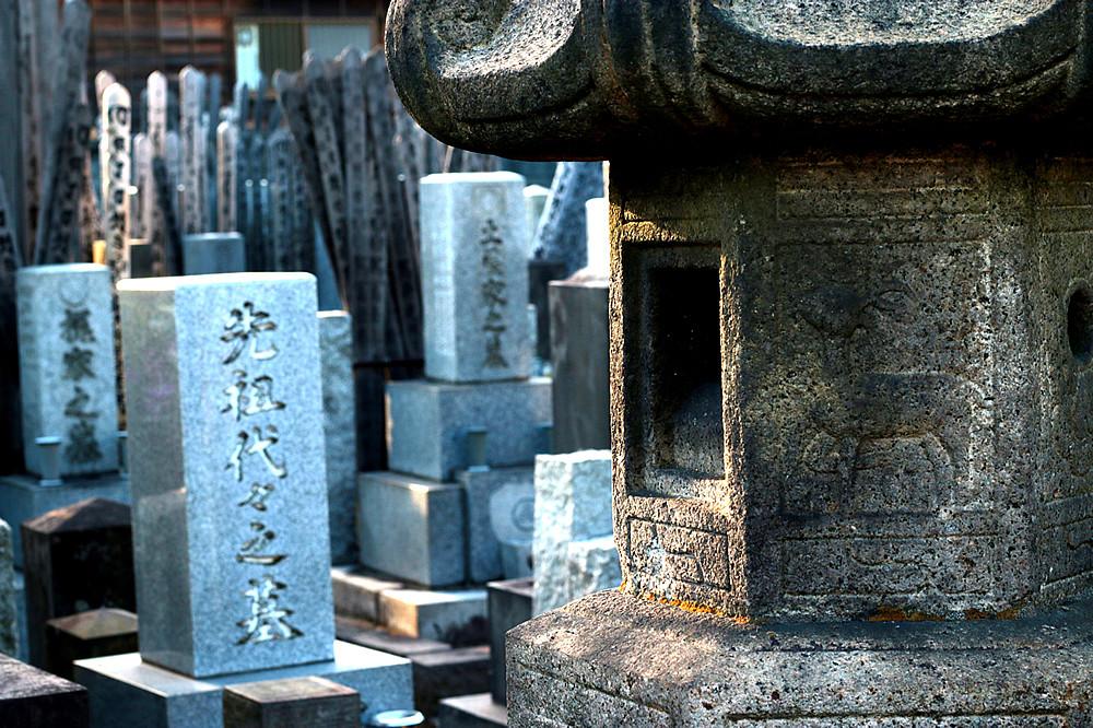 Buddhismo Sem Renascimento?