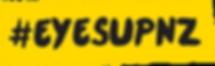eyesup logo Fla_reversed.png