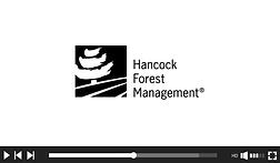 Video_frames_Hancock.png