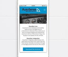 Autosense3.jpg