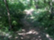 Horseback Trail Riding Oklahoma City