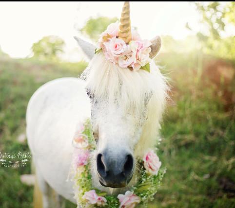 Unicorn Birthday Party Venue Oklahoma City