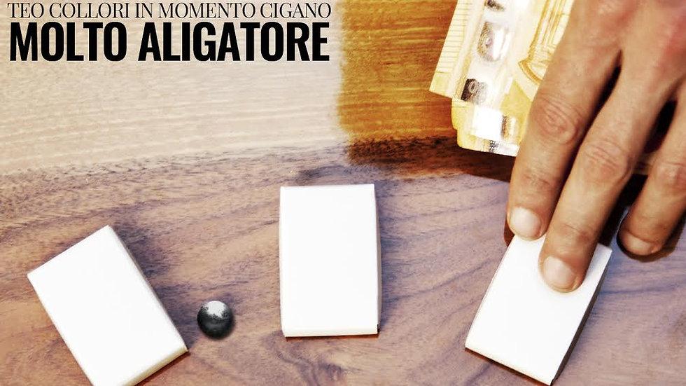 CD - Molto Aligatore