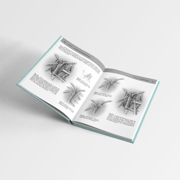 Surgical Illustration Book Layout