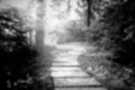 lenstest2 1_edited_edited.jpg
