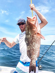 Red grouper fish naples