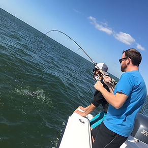 Tripletail fishing in Naples, FL