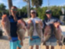 fishgrouper.jpg
