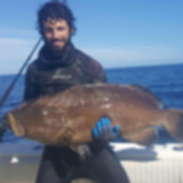 Capt. Bill D'Antuono Naples Florida Black Grouper