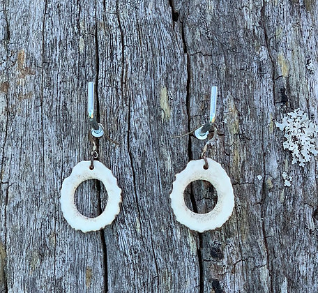 Antler Hollow Slice Earrings Medium