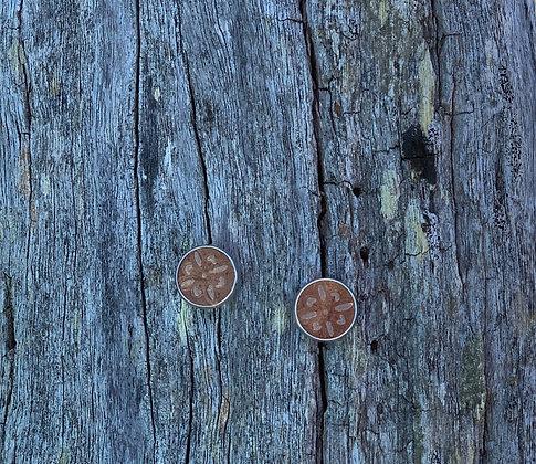 Small Studs Bronze