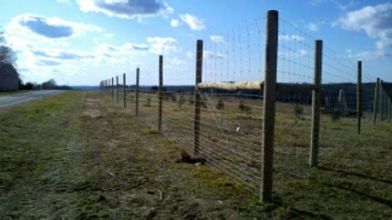 Olson Fencing Livestock And Game Fence